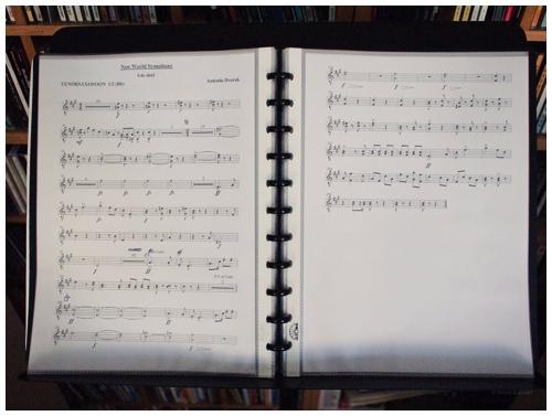 New World Symphony door Bruno Bollaert