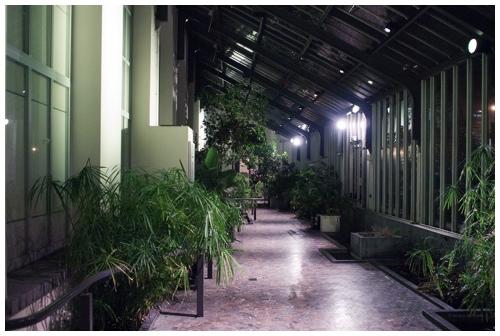 Bruno gaat naar den Botanique door Bruno Bollaert