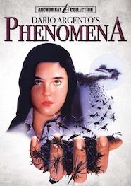 20141209_phenomena
